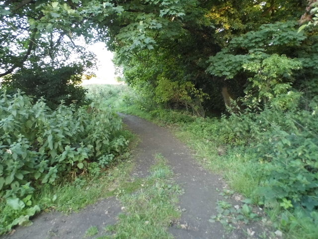 Hertfordshire Way, Redbournbury