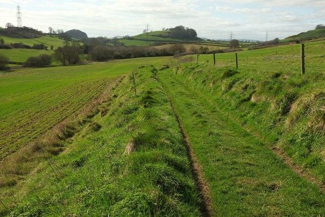 Bridleway near Mappercombe