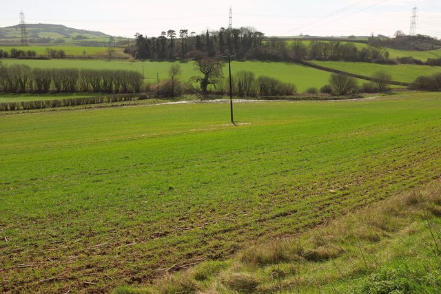 Valley near Mappercombe