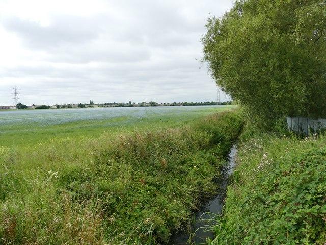 Field drain on North Common