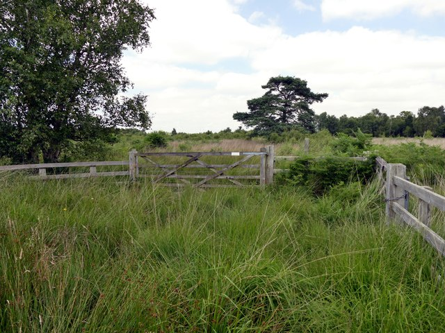 Gate and fence on Crowle Waste