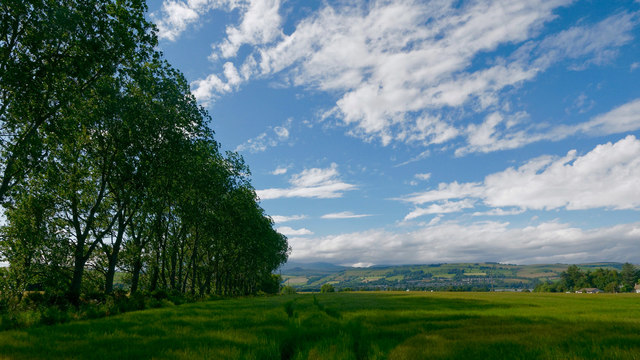 Field by Alcaig, Black Isle