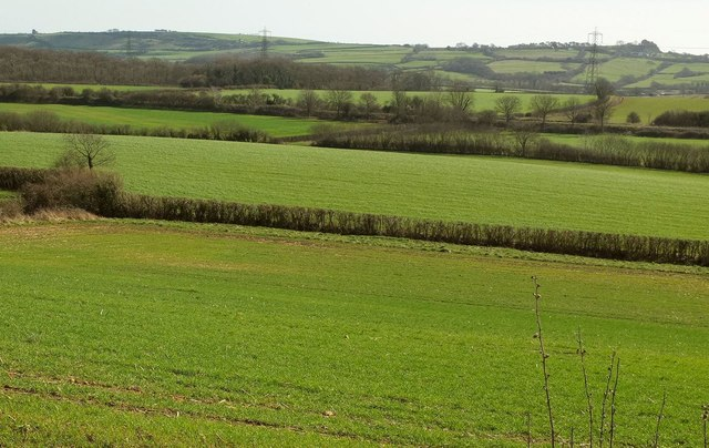 Farmland near Mappercombe