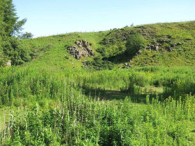 Skears Quarry (disused)