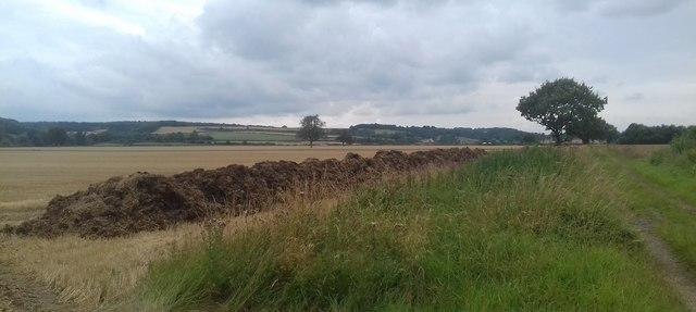 Arable Farmland near Fryton