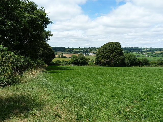 Field above the Culm valley