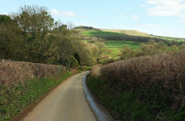 Lane to Eggardon Farms