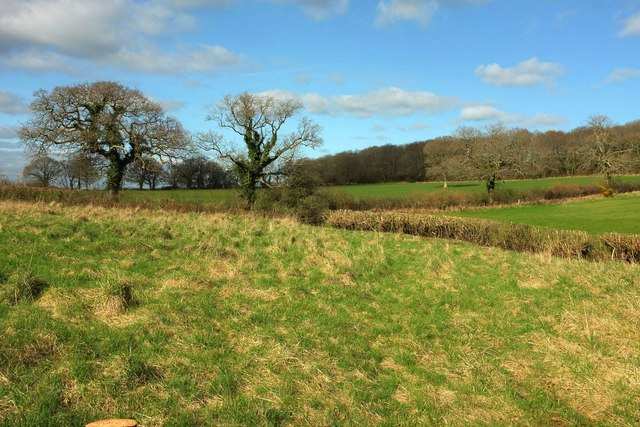 Farmland below Eggardon Hill
