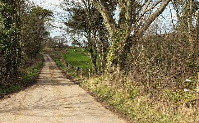 Lane at Brook Knowle