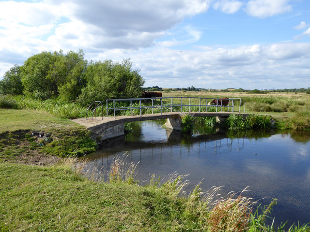Footbridge over River Colne, Staines Moor