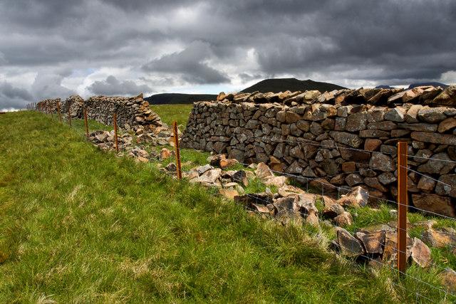 Dry stone wall rebuilding, Caw Fell