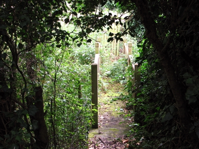 Footbridge over a drainage ditch