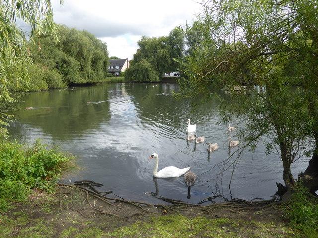 Pond on Platford Green