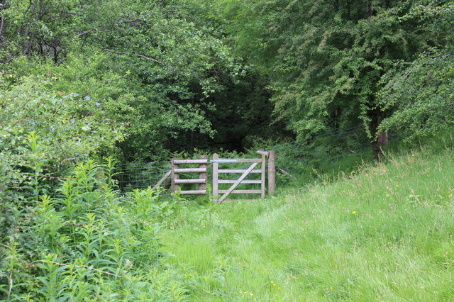 Gate from sheep pasture, Silent Valley LNR