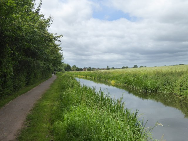 Bridgwater and Taunton Canal west of Hyde Farm