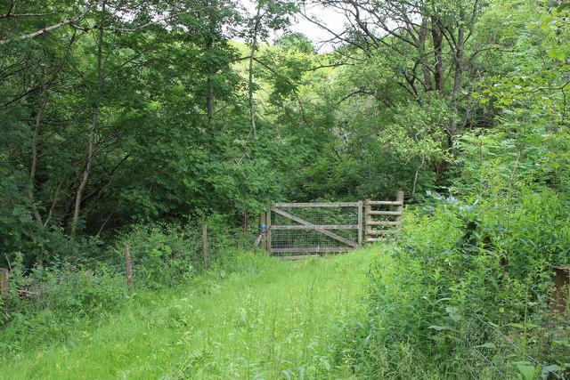 Field gate, sheep pasture, Silent Valley LNR