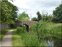 ST2526 : Bathpool Bridge over Bridgwater and Taunton Canal by David Smith