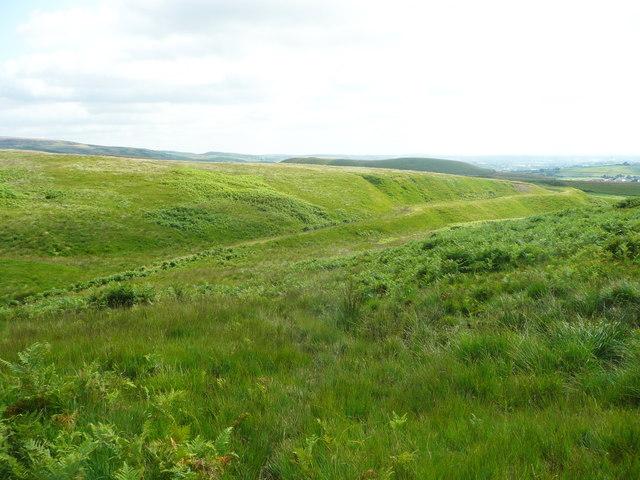 View of Solomon Cutting, Chelburn Moor