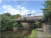 ST2325 : Pipe and footbridge over Bridgwater and Taunton Canal by David Smith