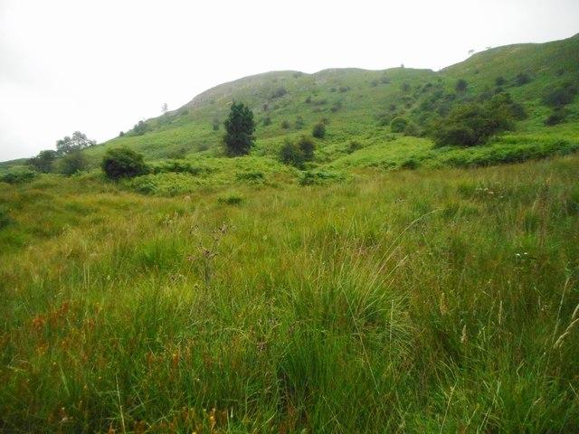 Loughrigg Terrace