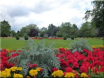 SE2955 : Flowers in The Valley Gardens, Harrogate by Richard Humphrey
