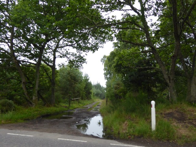 Track entrance at Cothall Wood