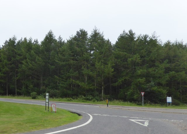 Road junction at Delnies Wood