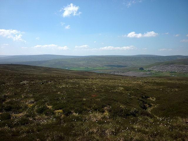 Westend Moor