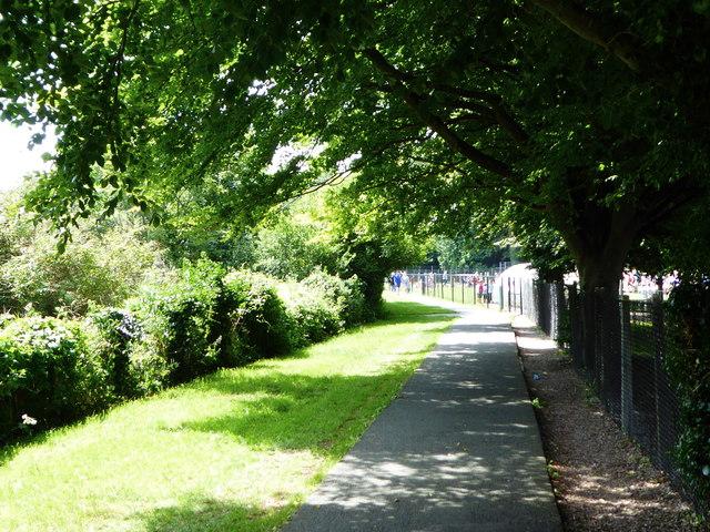 A shady footpath alongside Llanrwst Road