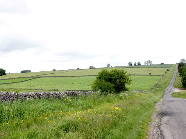 Fields at Horse Lane