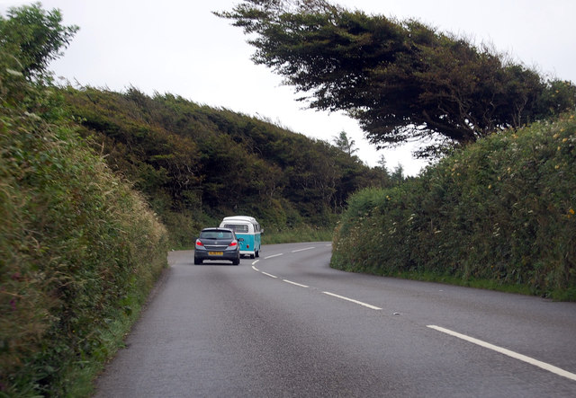 A39 passing a windblown tree