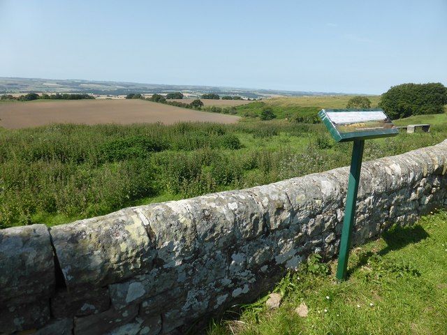 Looking north east from the back of St Oswald's churchyard
