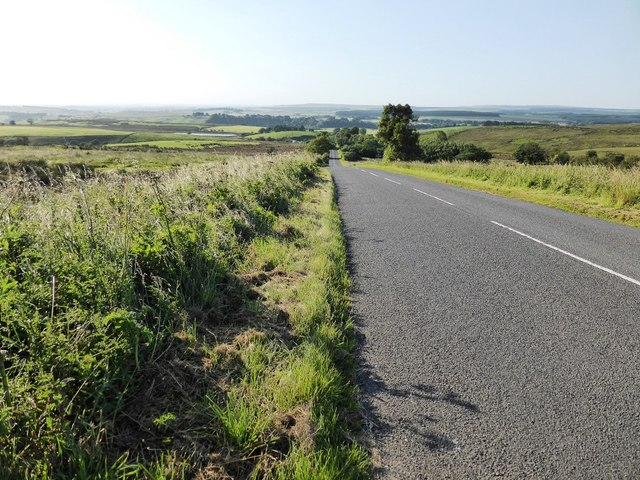 The road from Reaygarth to Shawfield