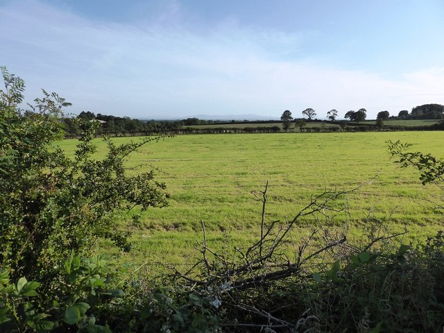 Field next to A6071 near Highberries Bridge