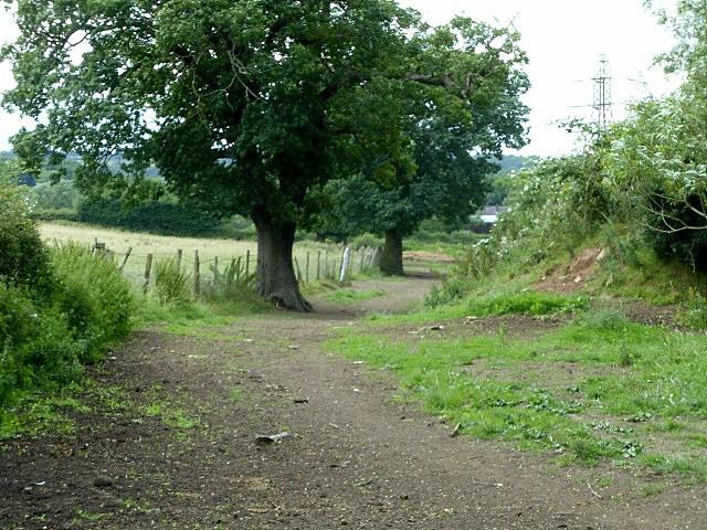 Bridleway near Lower Hagg Farm