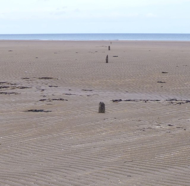 Line of stumps of poles on the beach