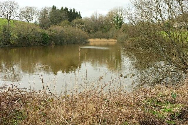 Pond, Toller Whelme