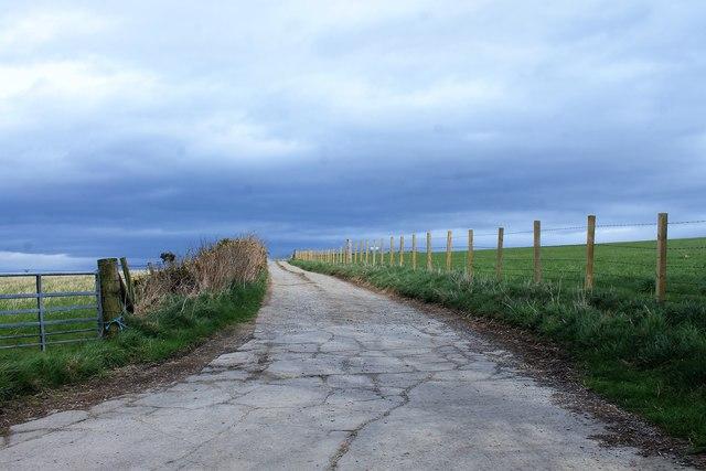 Bogdavie Road
