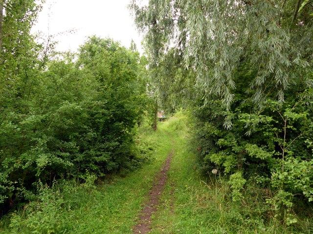 Footpath to Thorne Waste