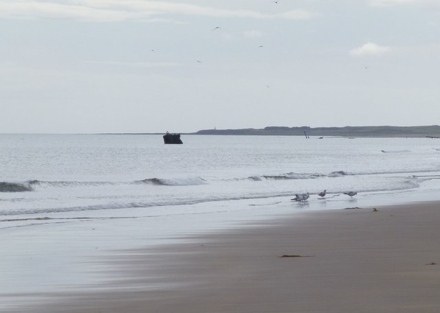 Looking along the beach at Goswick