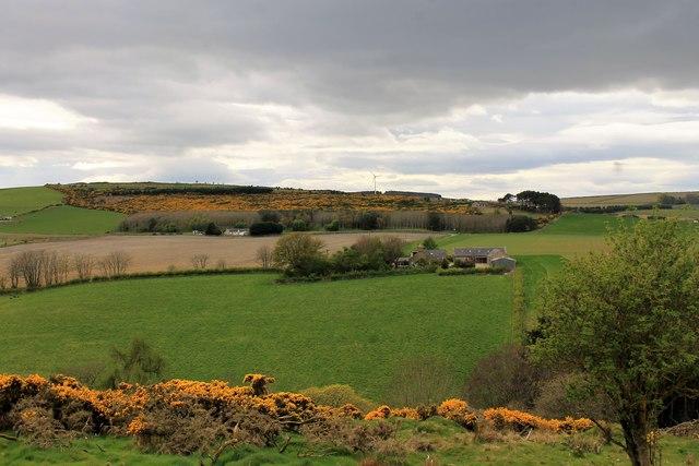 Littlehillie Farm