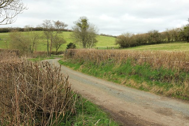 Road to Toller Whelme