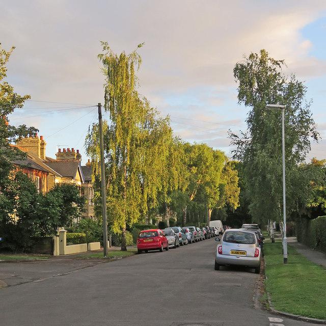Hinton Avenue: evening sunlight