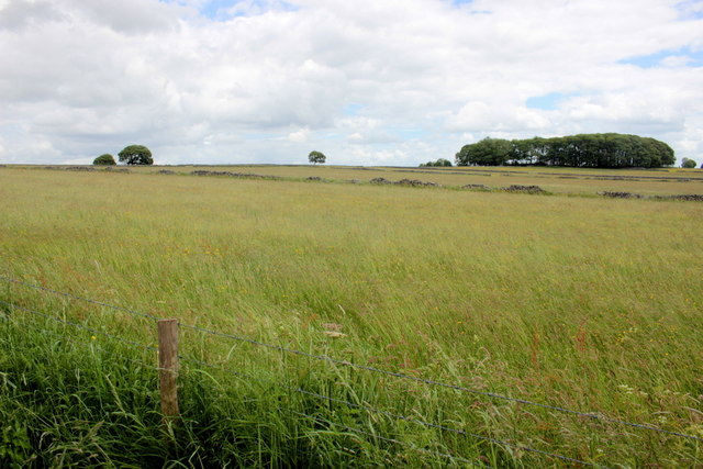 Countryside near Sheldon
