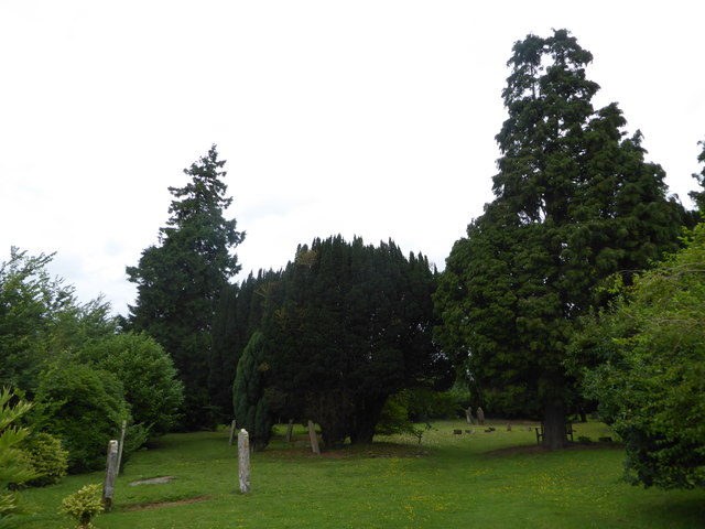 All Saints, Tudeley: churchyard (a)