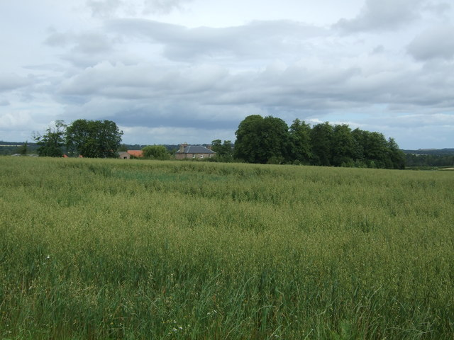 Crop field, Lempock Wells
