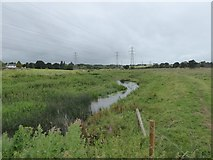 SX9791 : River Clyst with levees by David Smith