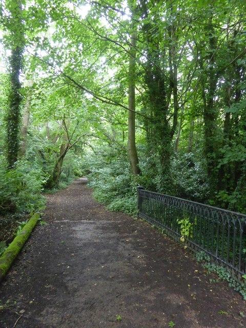 Bridge over drainage ditch, Sowton
