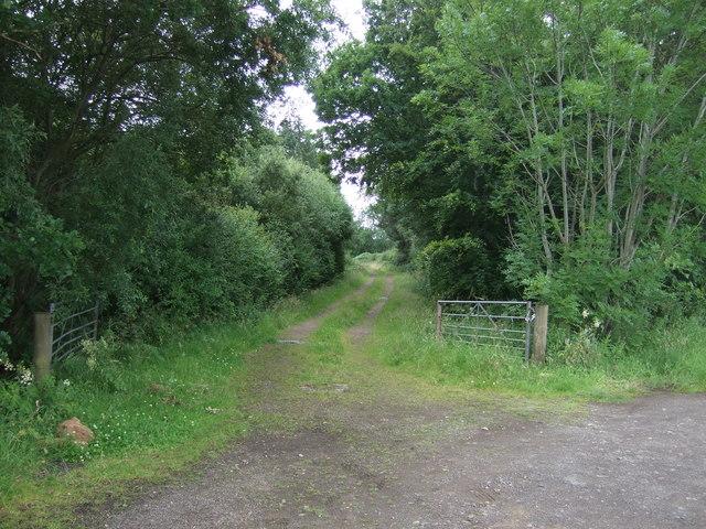 Track off the B6355, Pyotshaw