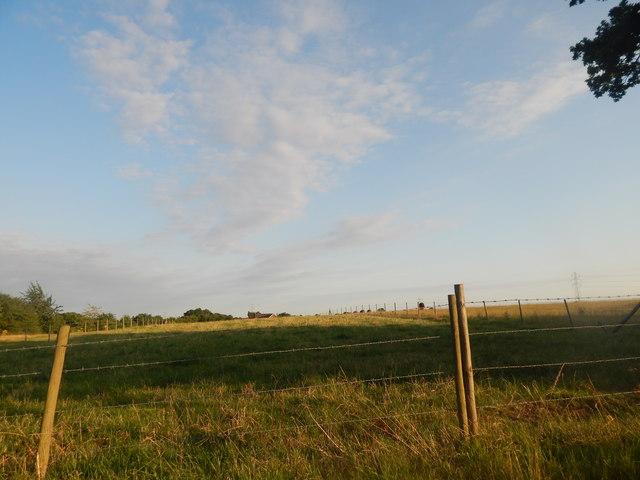Field, Sproughton